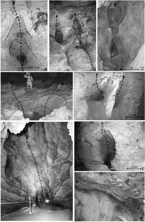 small resolution of examples of morphological features generated by hypogene speleogenesis as identified in vazante caves a rising chains of ceiling cupolas b side feeder