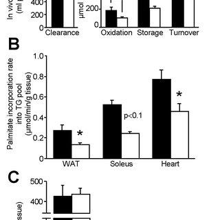 Relationship between WAT lipolysis and de novo lipogenesis
