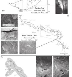 a tarelo cave main vertical profile b pena paleira cave main download scientific diagram [ 850 x 1248 Pixel ]