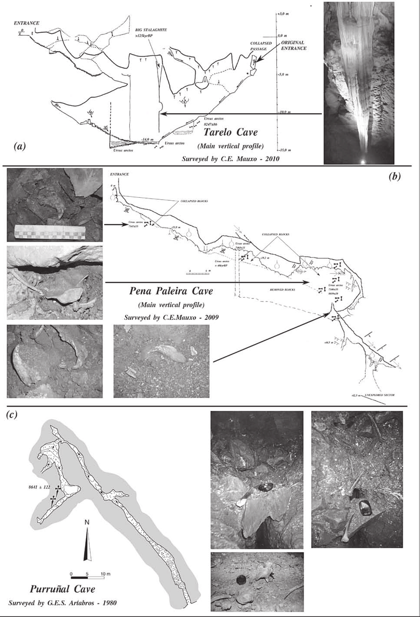 hight resolution of  a tarelo cave main vertical profile b pena paleira cave main download scientific diagram