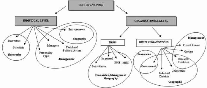 Unit of analysis in networks: individual vs