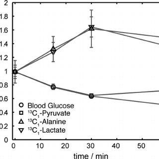 (PDF) In Vivo Magnetic Resonance of Hyperpolarized 13C1
