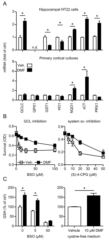 Dimethyl fumarate (DMF)-mediated protection in neuronal