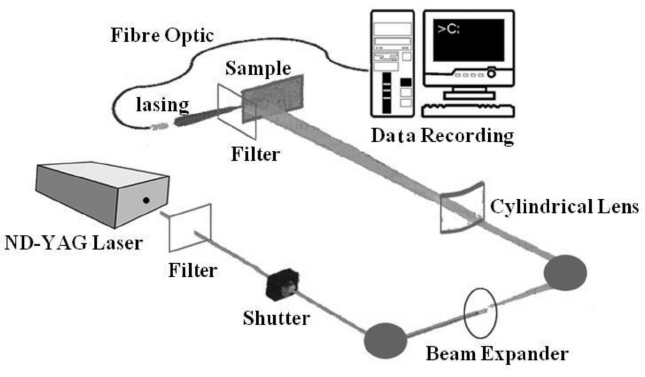 Schematic diagram of laser interference setup based on