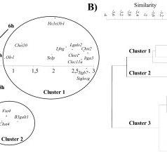 (PDF) Glycogenome expression dynamics during mouse C2C12