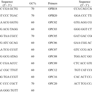 Sequence, operon codes and GC content of random primers
