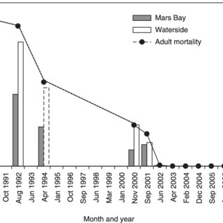 (PDF) Cats and seabirds: Effects of feral Domestic Cat