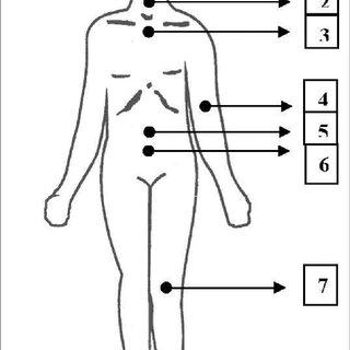 (PDF) Patient dosimetry