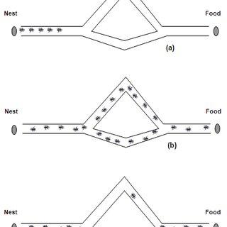 (PDF) Optimal Analog Circuit Sizing via Ant Colony