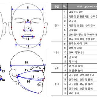 (PDF) Analysis of Korean Facial Measurements for Sizing