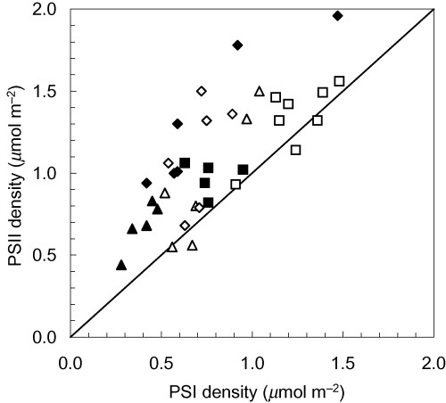 Comparison of PSII and PSI densities. Symbols explained in