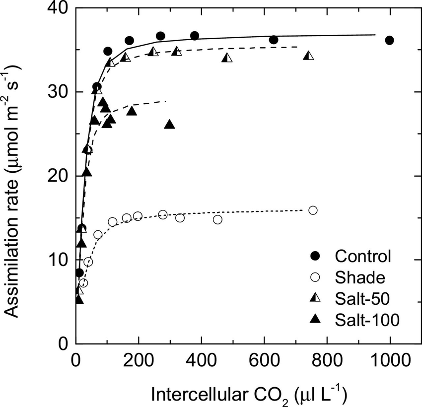 A/C i response curves for leaves of maize exposed to