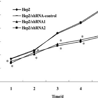Gelatin zymography analysis of MMP-2 and MMP-9 activity in
