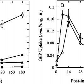 (PDF) Correction of Glycogen Storage Disease Type 1a in a