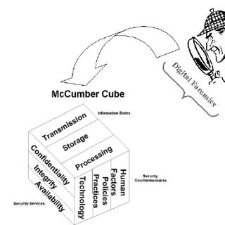 (PDF) A Theoretical Framework for Organizational Network