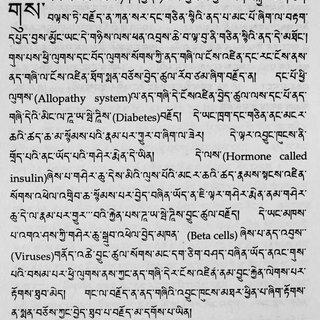 (𝗣𝗗𝗙) Correlating Biomedical and Tibetan Medical Terms in