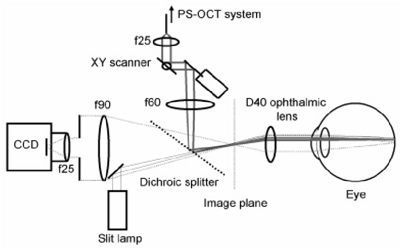 Schematic overview of the optical paths in the slit-lamp