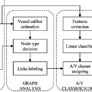 (PDF) An Automatic Graph-Based Approach for Artery/Vein