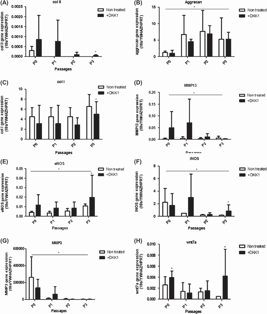 qPCR results for chondrocytes markers and Wnt pathway