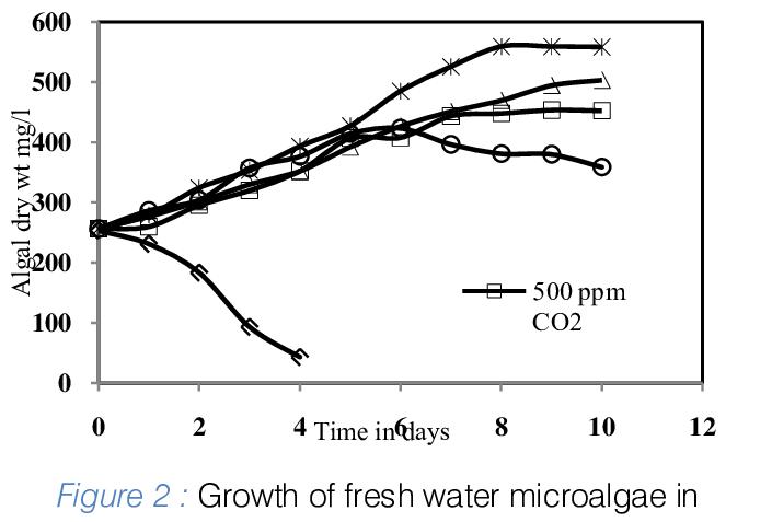 Schematic diagram of photobioreactor for sequesting CO 2