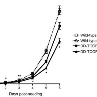 (A) The scheme for CRISPR/Cas9-mediated homologous
