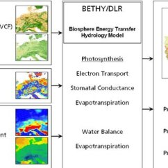 Diagram With Inputs And Outputs Of Photosynthesis Process Carrier 30rb Wiring Model Overview For Bethy Dlr Left Input Data Middle Internal