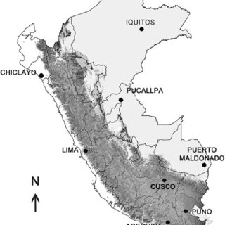 (PDF) A Study of the Parrot Trade in Peru and the