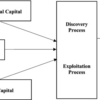 (PDF) The role of social and human capital among nascent