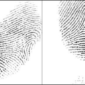 (PDF) Standard Fingerprint Databases: Manual Minutiae