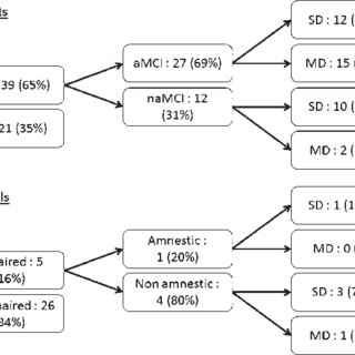 Clinical classification. Values are raw numbers (%); SCI