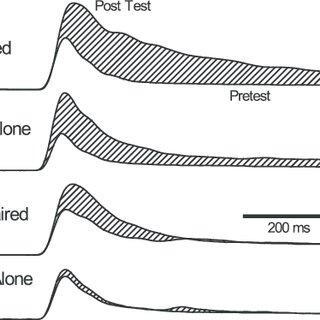 (PDF) Conditioning-Specific Reflex Modification of the