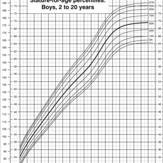 Head circumference-for-age percentiles, girls, birth to 36