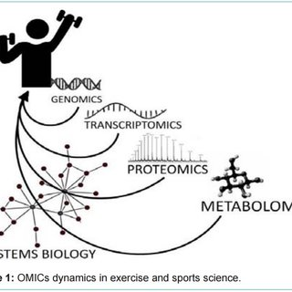 (PDF) Proteomics in Exercise and Sports Science: Still a