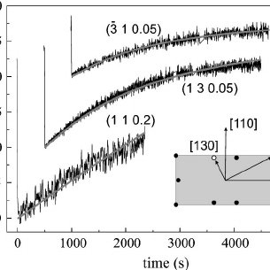 Time dependence of the peak intensities in different in