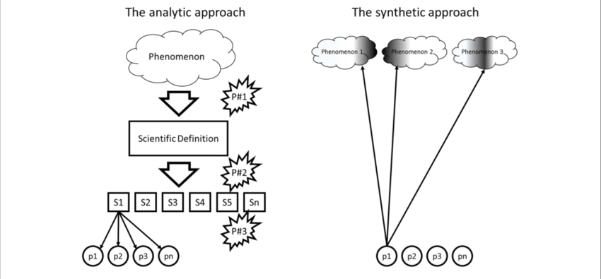 | The analytic and the synthetic approach to human