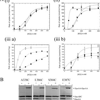 (PDF) Cystathionine β-Synthase (CBS) Domains 1 and 2