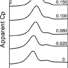 Summary of glucose metabolism in P . putida KT2440, as