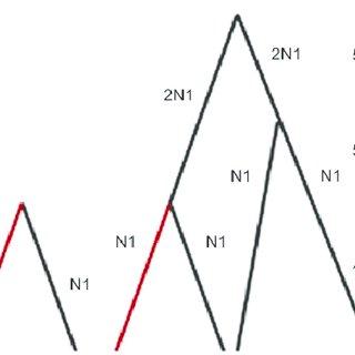 (PDF) Detecting Signatures of Selection Through Haplotype