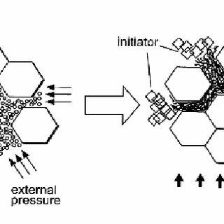 (PDF) Innovative Bioceramics