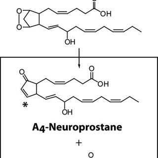 (PDF) Electrophilic Cyclopentenone Neuroprostanes Are Anti