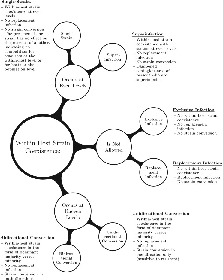 A Modeling Framework for the Evolution and Spread of