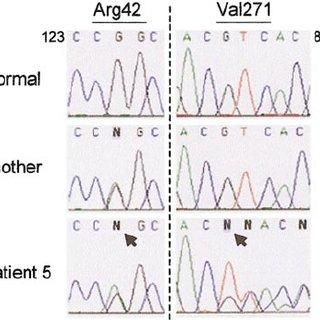 (PDF) Autosomal recessive chronic granulomatous disease