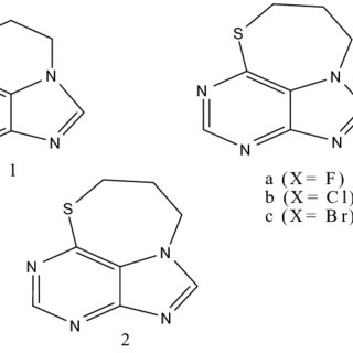 (PDF) Biological activities of purine analogues: a review