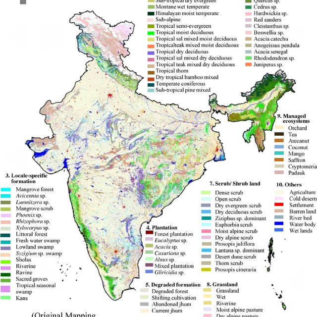Outline map of india showing distribution of different forest types (after. Vegetation Type Map Of India Download Scientific Diagram