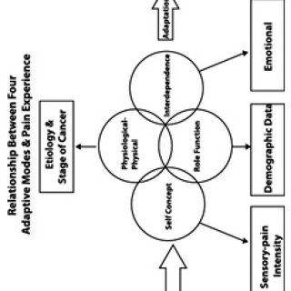 (PDF) The Relationship between Pain Experience and Roy