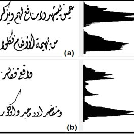 Examples of (a) good Diwani calligraphy projection profile