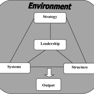 (PDF) Diagnosing organisational health: a case study of