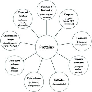 (PDF) FISH IN HUMAN HEALTH AND NUTRITION
