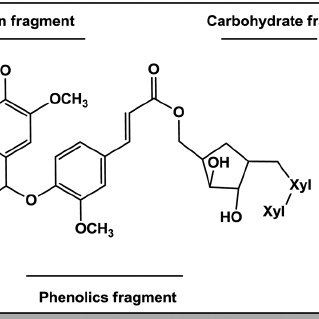 Phenols and phenolic acids obtained in low molecular