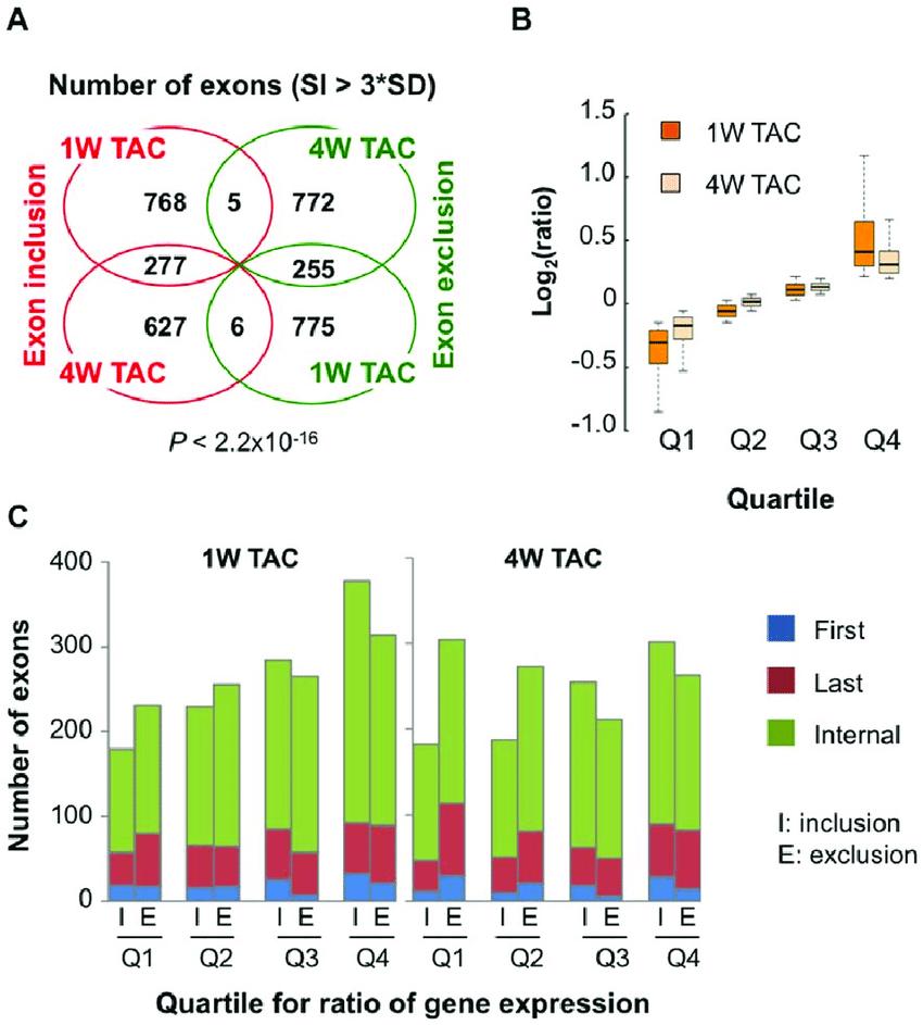 medium resolution of global analysis of mrna isoform regulation in cardiac hypertrophy a venn diagram of
